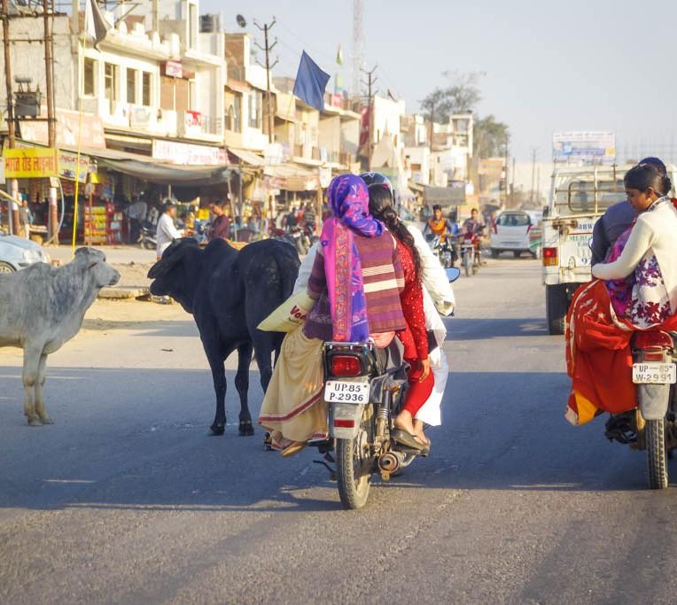 India day 1-12