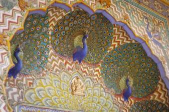 India day 5 (Jaipur)-12