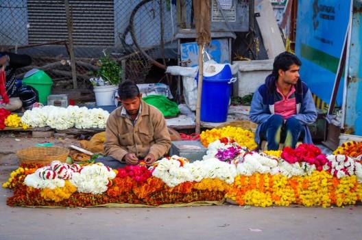 India day 5 (Jaipur)-33