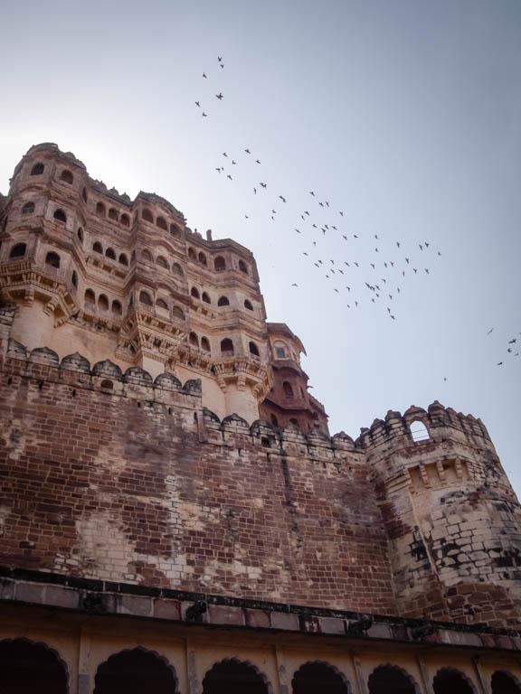 Jodhpur-7