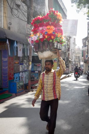 Udaipur (shashi)-9